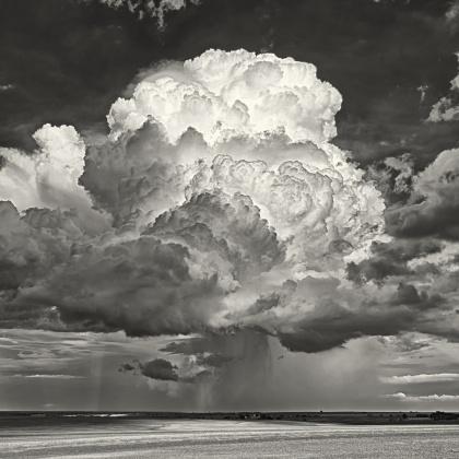 Big Sky Cordell-bw