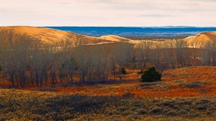 Little-Sahara-Winter-Color-triptich-1