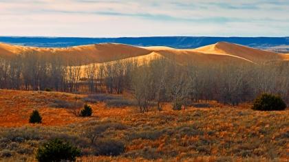 Little-Sahara-Winter-Color-triptich-2