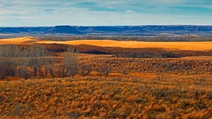 Little-Sahara-Winter-Color-triptich-3