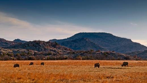 _Wichita Wildlife Refuge_7664
