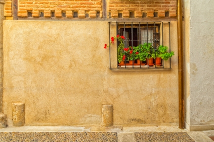 This little court yard is found just inside the doors of Antigua Hospital Benefico De La Misericordia located near Plaza Cervantes in Alcalá de Henares, Spain.